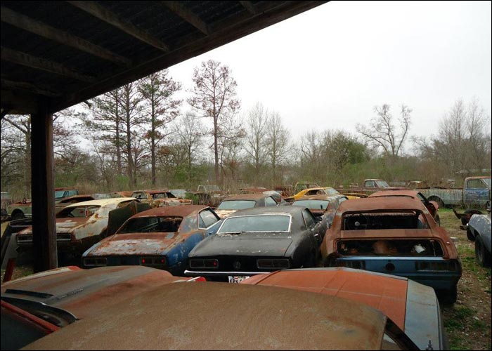 Camaro Ranch