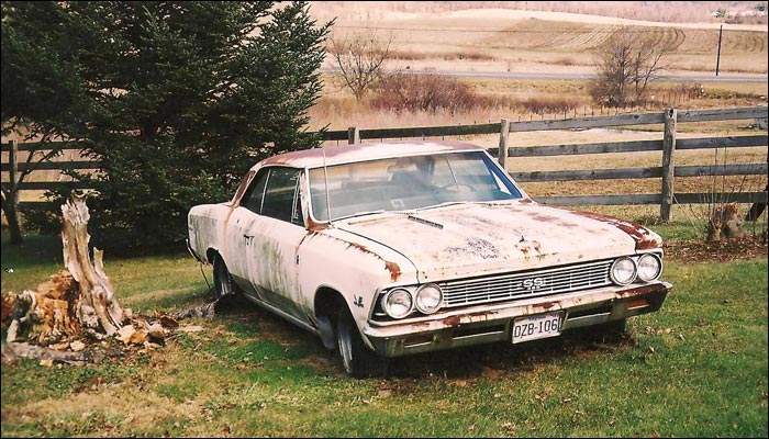 Rotting Bb Ss Chevelle Cars In Barns Canadian Poncho